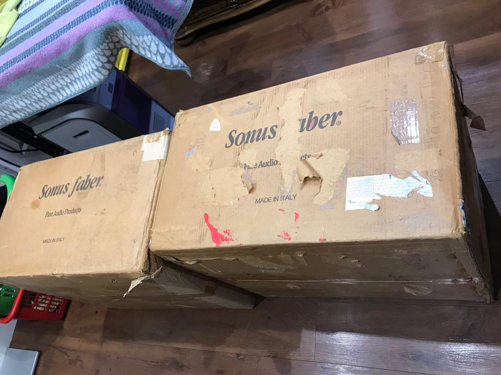 Sonus Faber Extrema + Six Pillar Stands